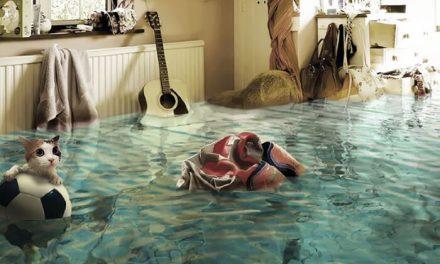 «Потопные дела» или что делать, если соседи затопили квартиру